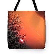 Sunrise And Hibernating Tree Tote Bag