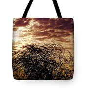 Sunrise And Lacy  Tree Tote Bag