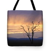 Sunrise And Rain Tote Bag