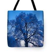 Sunrise And Tree Tote Bag