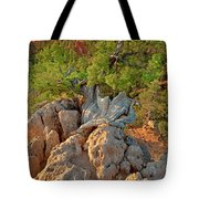 Sunrise At Bryce Canyon National Park Utah Tote Bag