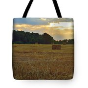 Sunrise At The Wheat Field Tote Bag