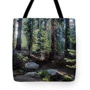 Sunrise Creek Tote Bag