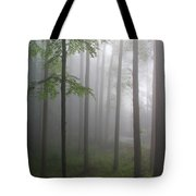 Sunrise Fog Tote Bag by Melissa Petrey