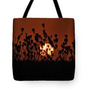 Sunrise In South Texas Tote Bag