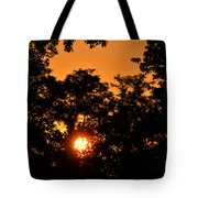 Sunrise In The Forest Tote Bag