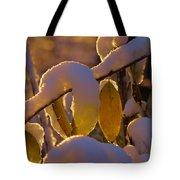 Sunrise On Autumn Snow Tote Bag