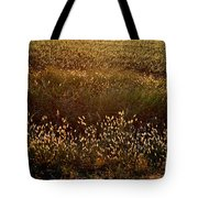Sunrise On Wild Grass Tote Bag