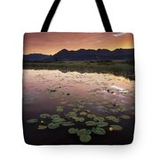 Sunrise Over Granadier Range Molas Pass Tote Bag