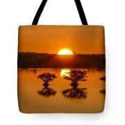 Sunrise Over Mangroves Tote Bag