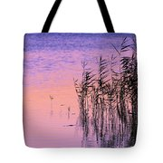 Sunrise Reeds Tote Bag