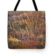 Sunrise Reflections On Dried Grass Tote Bag