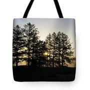 Sunrise Shines Through The Pines Tote Bag