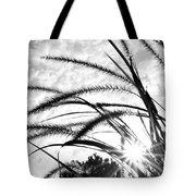 Sunrise Sunburst Tote Bag