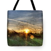 Sunrise Through Grass Tote Bag