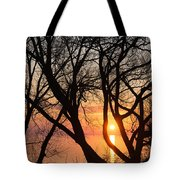 Sunrise Through The Chaos Of Willow Branches Tote Bag