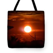 Sunset - Stuck On Tree Branch Tote Bag