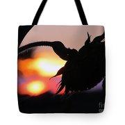 Sunset 365 19 Tote Bag