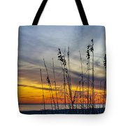 Sunset And Grasses Tote Bag