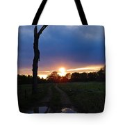 Sunset And The Dead Tree Tote Bag