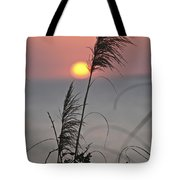 Sunset At 188 Mm Focal Length Tote Bag