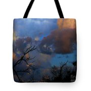 Sunset At Clam Pass Tote Bag
