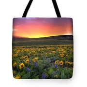 Sunset At Columbia Hills State Park Tote Bag