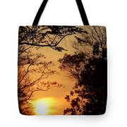 Sunset At Jungle Tote Bag