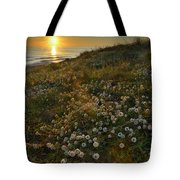 Sunset At The Beach  White Flowers On The Sand Tote Bag by Guido Montanes Castillo