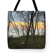 Sunset At The Island Tote Bag