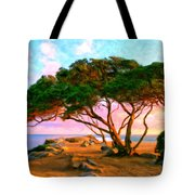 Sunset At The Wedge In Newport Beach Tote Bag