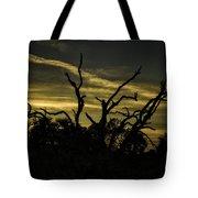 Sunset Avalon Beach Tote Bag
