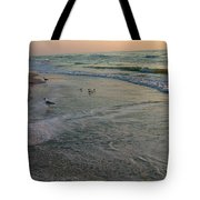 Sunset Bird Patrol Tote Bag