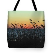 Sunset Colors Island Beach State Park Nj Tote Bag