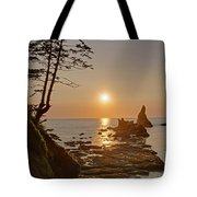 Sunset De Agave Tote Bag