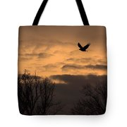 Sunset Eagle Tote Bag