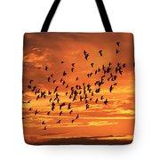 Sunset Flight Tote Bag