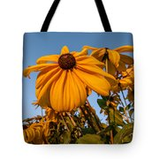 Sunset Flowers Tote Bag