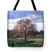 Sunset Following A Storm 2 Tote Bag