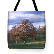 Sunset Following A Storm Tote Bag