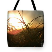 Sunset Grass 1 Tote Bag