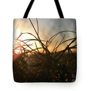 Sunset Grass 2 Tote Bag
