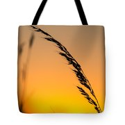 Sunset Grass Tote Bag