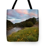 Sunset In Cobb Valley Of Kahurangi Np Of New Zealand Tote Bag
