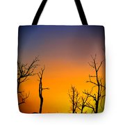 Sunset In Mesa Verde Tote Bag