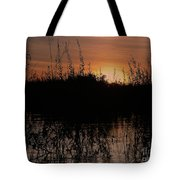 Sunset In The Pantenal Tote Bag