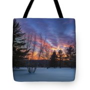 Sunset In The Park Square Tote Bag