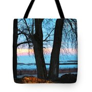 Sunset In The Trees Tote Bag