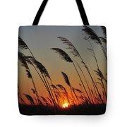Sunset Island Beach State Park Nj Tote Bag