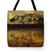 Sunset Jd Tote Bag